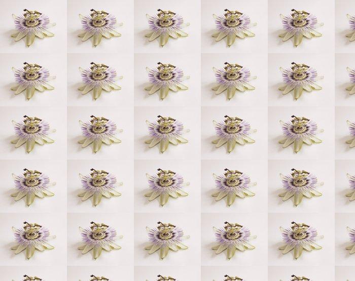 Vinylová Tapeta Isolated Bluecrown Passiflora - Rostliny