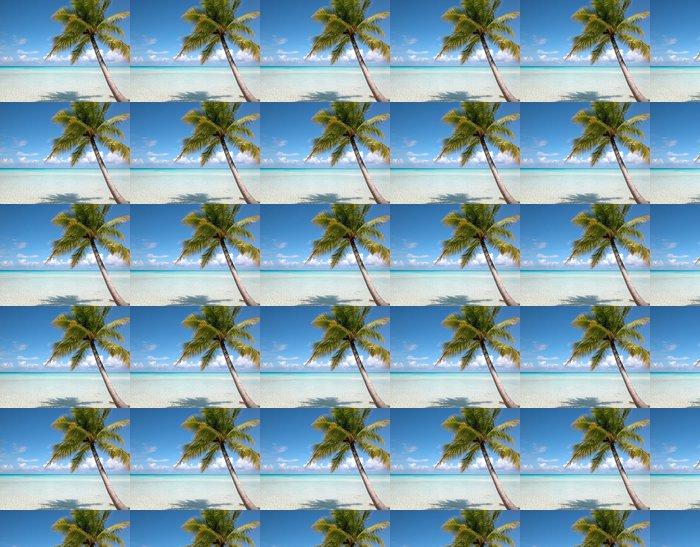 Vinylová Tapeta Pláž a kokosové Turks & Islands - Bahamy - Amerika