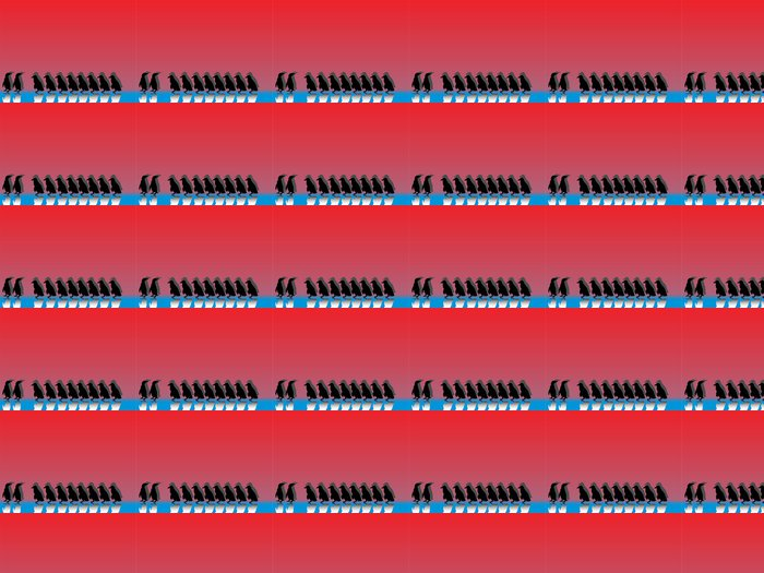 Vinylová Tapeta Pinguinreihe mit Spiegelungen und farbigem pozadí - Ptáci