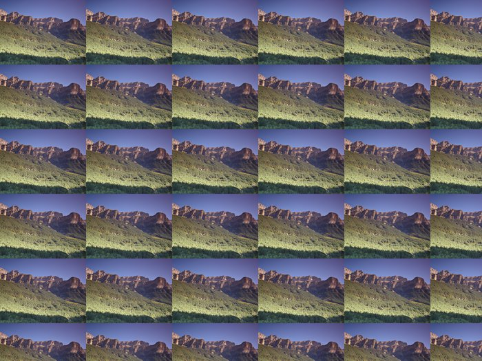 Vinylová Tapeta Národního parku Ordesa a Monte Perdido - Stromy
