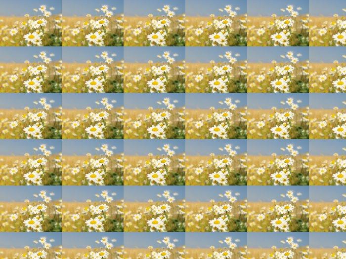 Vinylová Tapeta Letní květy - Zemědělství