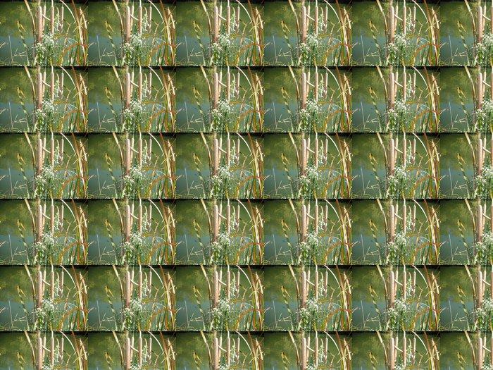 Vinylová Tapeta Cattails - Přírodní krásy