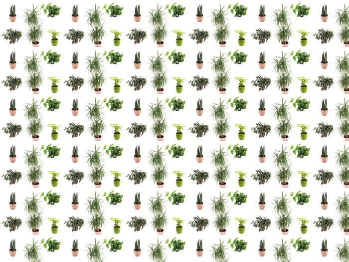 Vinylová Tapeta Grünpflanzen - Rostliny