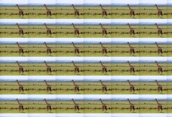 Vinylová Tapeta Wild Žirafa - Afrika