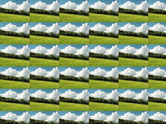 Vinylová Tapeta Prérie vzdálenost - Roční období