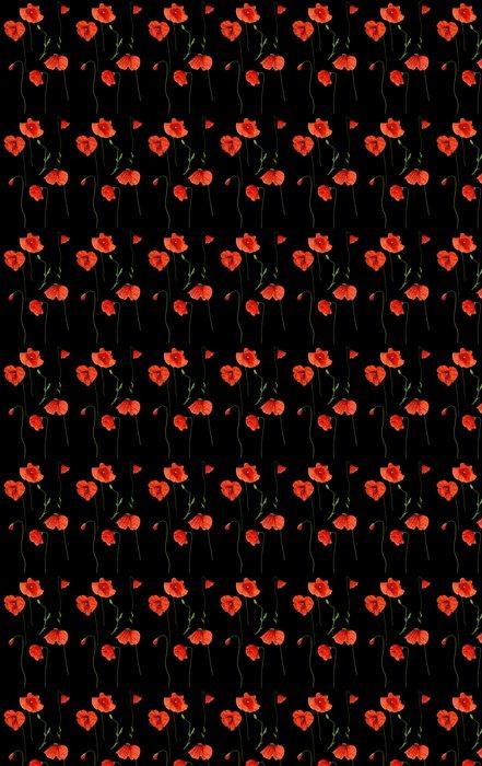 Vinylová Tapeta Divoké červené květy máku nastavit na černém - Témata