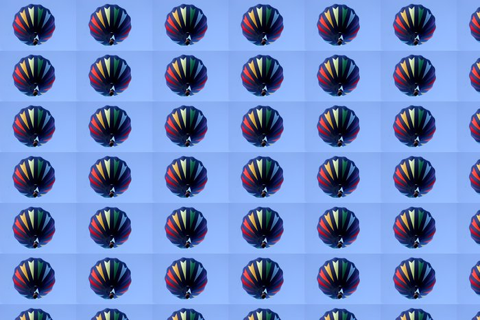 Vinylová Tapeta Horkovzdušný balón v barvách duhy - Vzduch