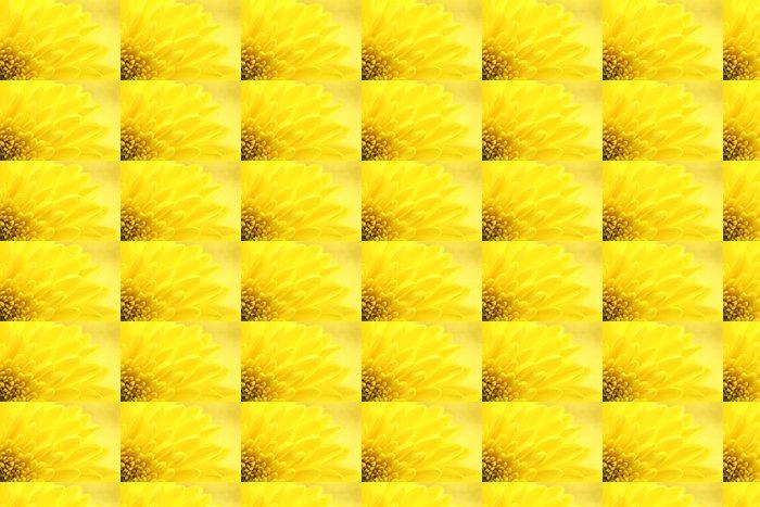 Vinylová Tapeta Žluté chryzantémy lístků makro snímek - Květiny