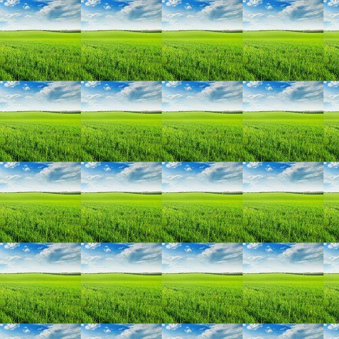 Vinylová Tapeta Zelené pšeničné pole a modré zatažené obloze - Roční období