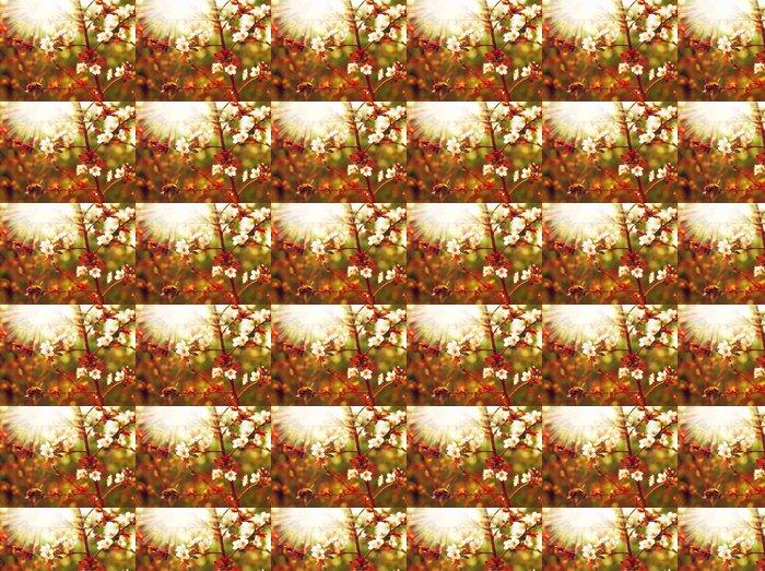 Vinylová Tapeta Mandlový strom květ - Roční období