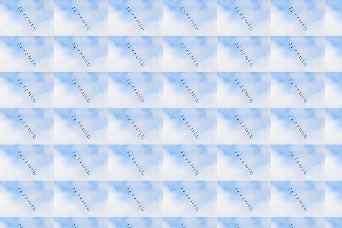 Vinylová Tapeta Jeřáby - Ptáci