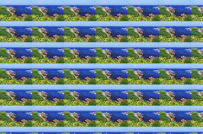Vinylová Tapeta Žluté květy na trávě pokryté skály - Voda