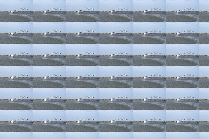 Vinylová Tapeta Racek je létání v přední části trajektu - Ptáci