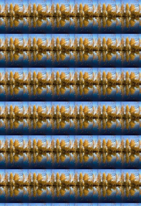 Vinylová Tapeta Podzimní přírodě, který se odráží Golden stromy ve vodě - Roční období