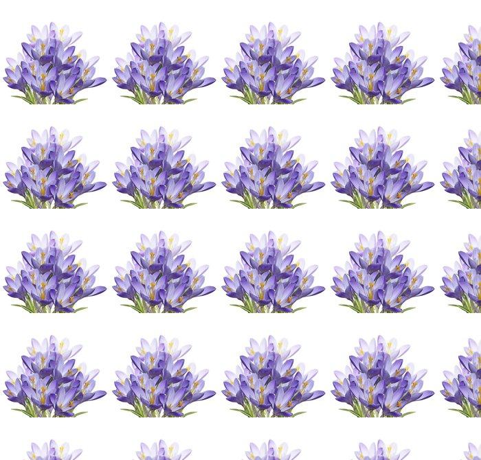 Vinylová Tapeta Spring Crocus květiny - Květiny