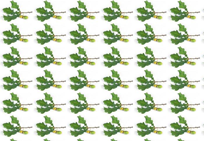 Vinylová Tapeta Oak větev s žaludy - Roční období