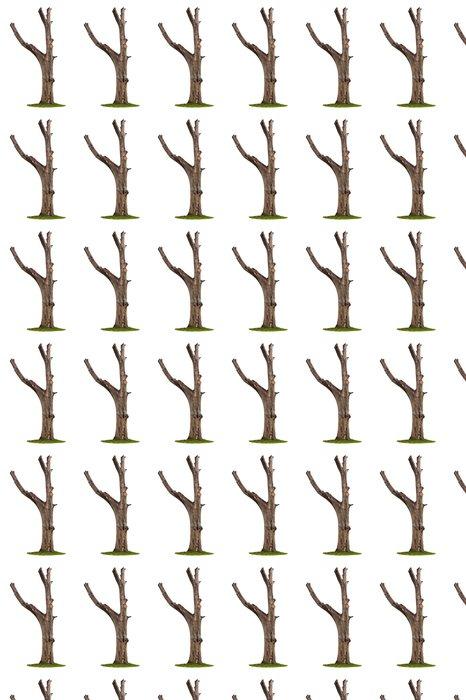 Vinylová Tapeta Strom na bílém pozadí - Život