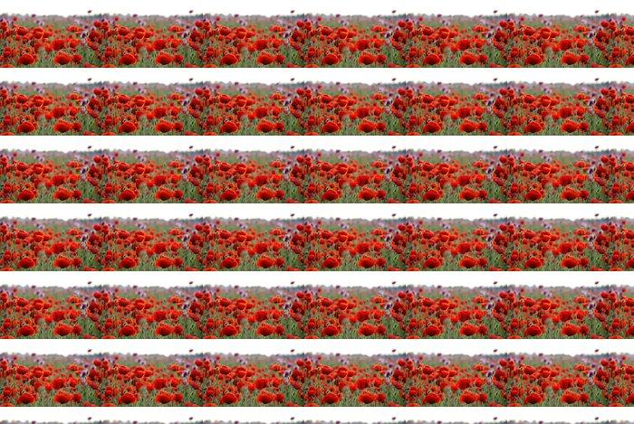 Vinylová Tapeta Červený mák pole s mělkým dof - Květiny