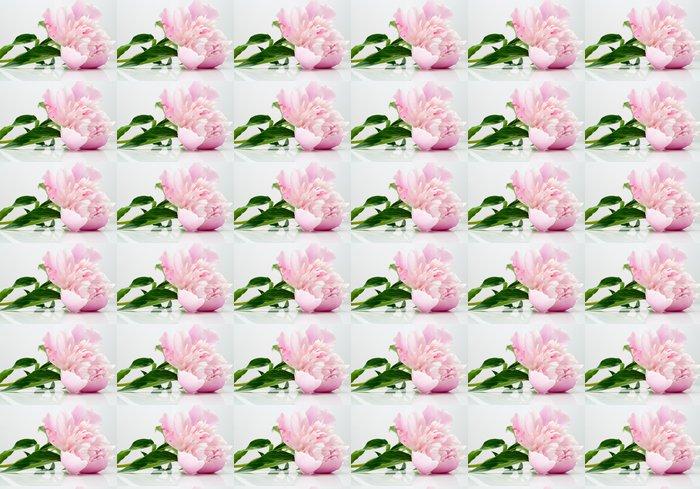 Vinylová Tapeta Pivoňka květ na světlo - Květiny