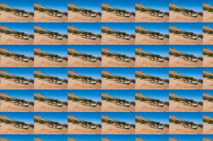 Vinylová Tapeta Olivový Galilee - Roční období