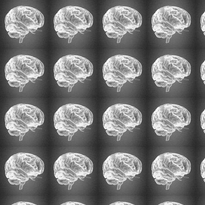Vinylová Tapeta Lidské tělo mozek - Věda