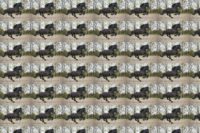 Vinylová Tapeta Perfektní fríský hřebec běží na písku na podzim - Savci