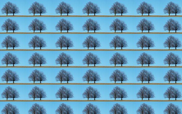 Vinylová Tapeta Stromy - Roční období
