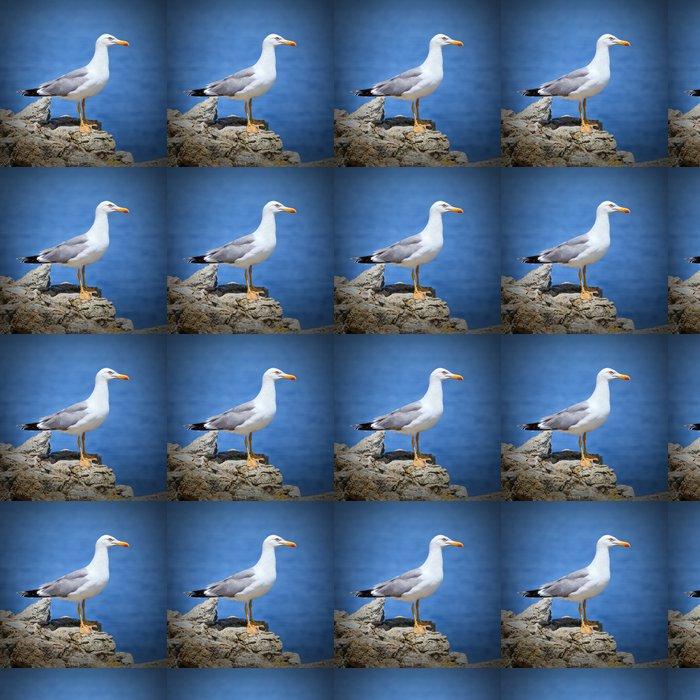 Vinylová Tapeta Racek - Ptáci