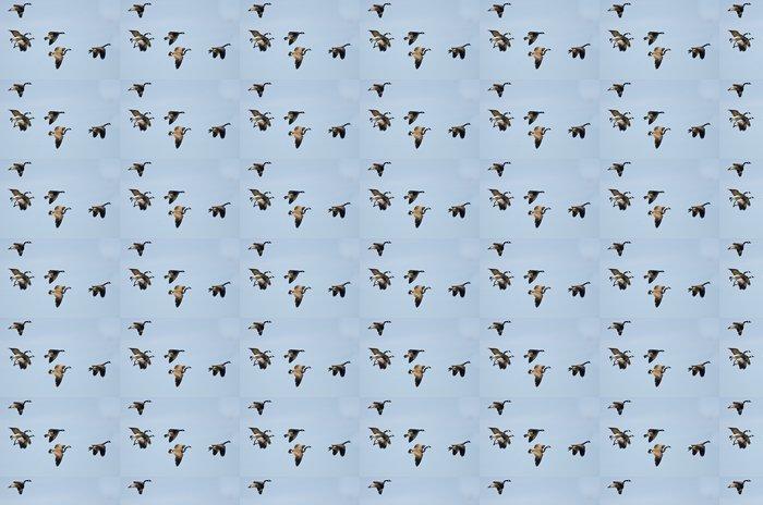 Vinylová Tapeta Velký Hejno hus letících v Blue Sky - Ptáci