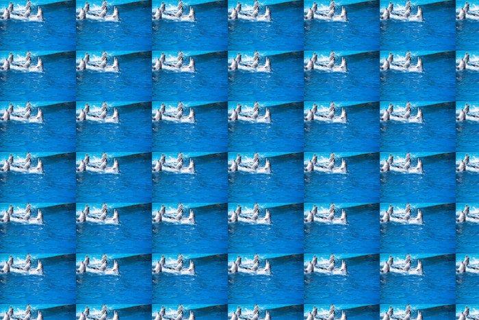Vinylová Tapeta Delfíny plavat v bazénu - Evropa