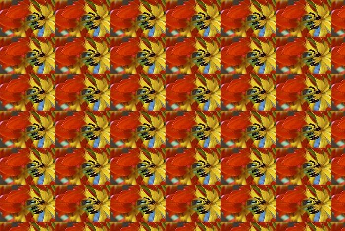 Vinylová Tapeta Detailní záběr na červené a žluté tulipány - Květiny
