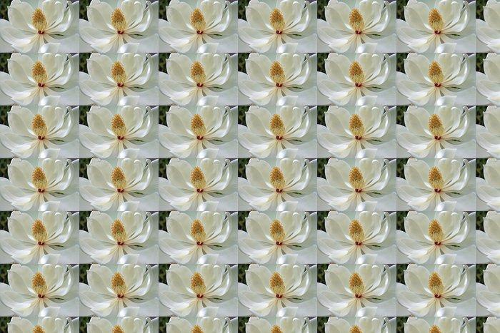 Vinylová Tapeta Květ magnólie - Květiny