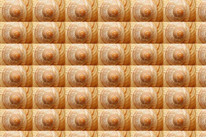 Papier Peint à Motifs Vinyle La coquille de l'escargot gros plan - Autres Autres