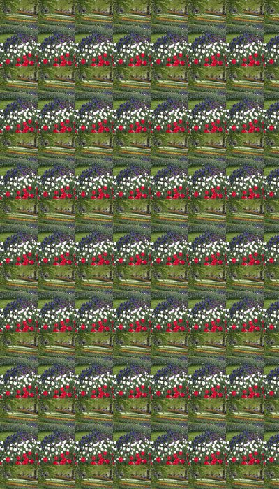 Vinylová Tapeta Pohled Keukenhof tulipán parku v Holandsku - Evropská města