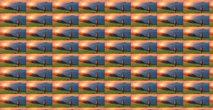 Vinylová Tapeta Letní krajina s koněm v horách. Západ slunce - Témata