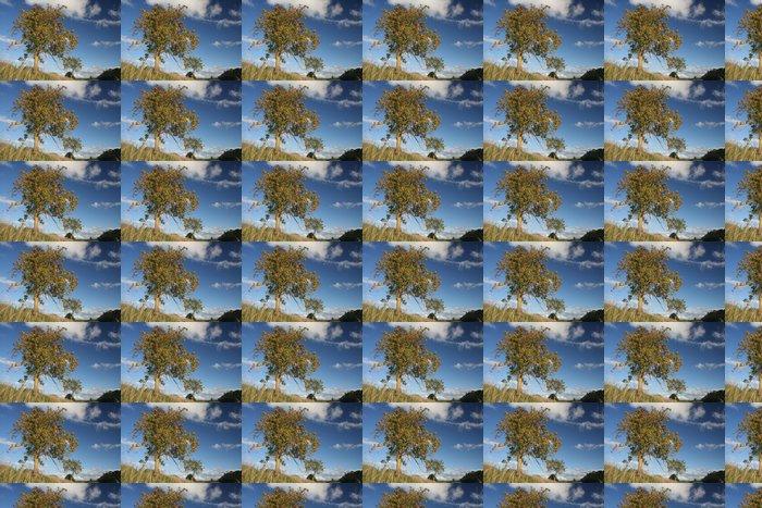 Vinylová Tapeta Mountain Ash, jeřabiny - Nebe