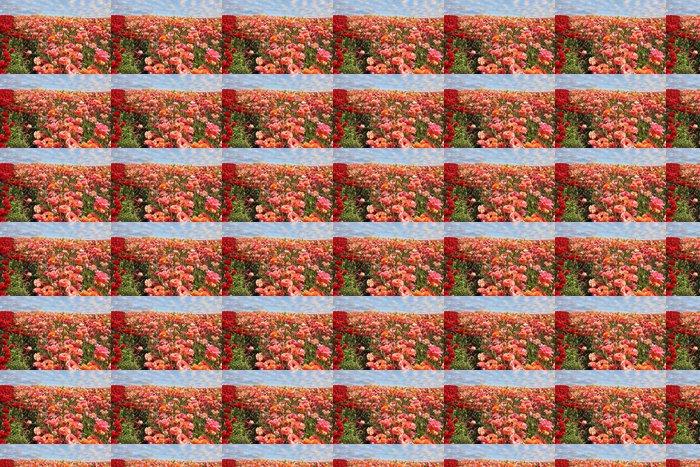 Vinylová Tapeta Oranžové a červené pryskyřníky - Zemědělství