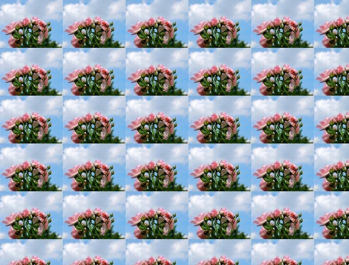 Vinylová Tapeta Rosa Romantische Rose - Květiny