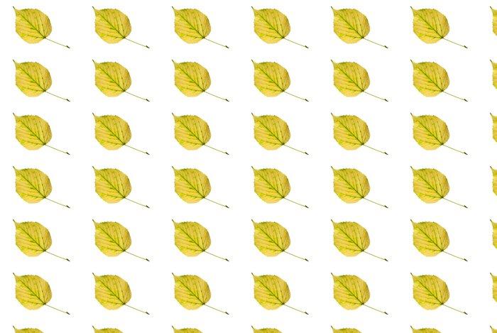 Vinylová Tapeta Žlutý lipový lístek - na podzim se blíží. - Roční období
