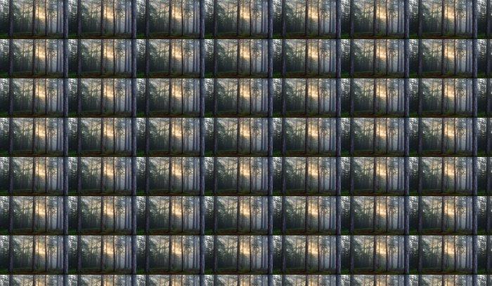 Vinylová Tapeta Sluneční paprsky v borovém lese - Lesy