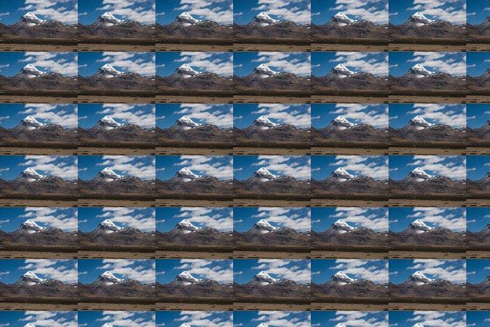 Vinylová Tapeta Divoké osly a Mt. Kailash, Tibet - Témata