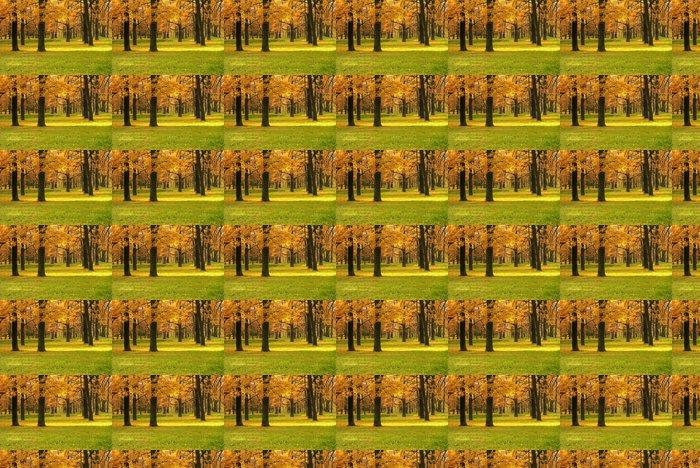 Vinylová Tapeta Podzimní krajina v parku - Roční období