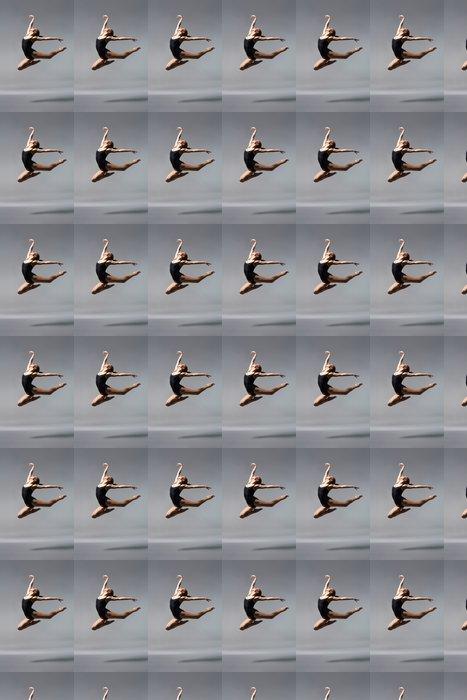 Vinylová Tapeta Mladá krásná baletka na šedém pozadí - Osud