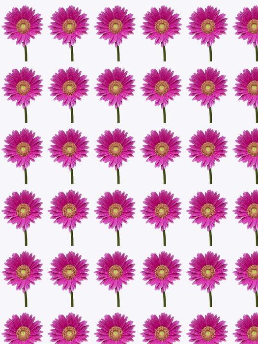 Vinylová Tapeta Isollated Gerber daisey se stonkem - Květiny