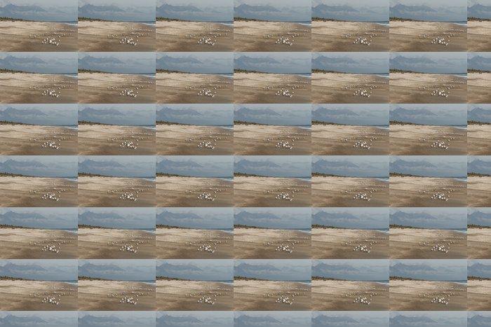 Vinylová Tapeta Pobřeží poblíž Haast na Novém Zélandu - Oceánie