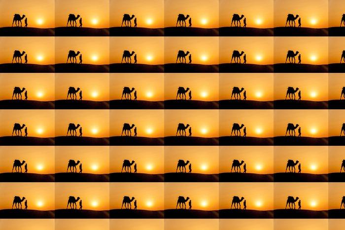 Vinylová Tapeta Pouštní místní procházky s velblouda přes pouště Thar - Na cestě