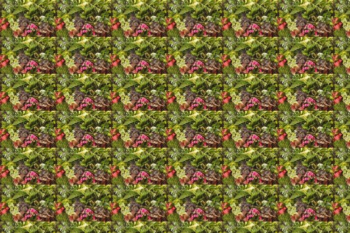 Vinylová Tapeta Příroda na pozadí - Rostliny