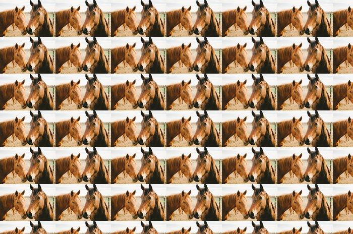 Papel Pintado Estándar Dos caballos de la castaña - Temas