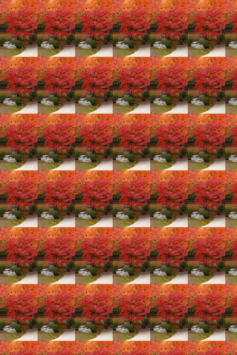 Vinil Duvar Kağıdı Sonbaharda Japonya -