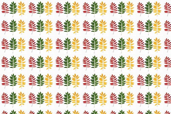 Vinylová Tapeta Tři větve horské popela na bílém pozadí - Roční období